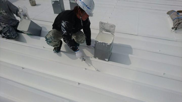 屋根上塗り (3)